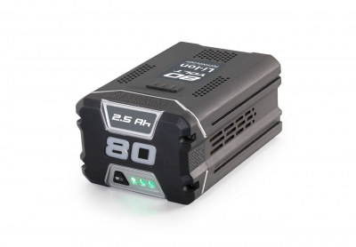 BATTERIES AND ACCESSORIES SBT 2580 AE